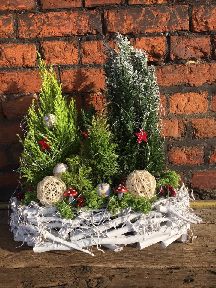 Blog Choinki I Ozdoby świąteczne Naszogrodniczypl